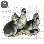 Tufted Toulouse Goslings Puzzle