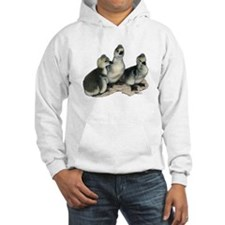 Tufted Toulouse Goslings Hoodie