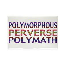 Polymorphous Perverse Polymath Rectangle Magnet
