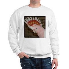 Major Mitchells Cockatoo Sweatshirt