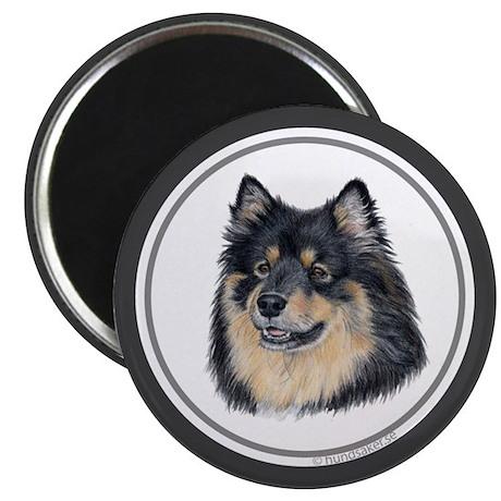 """Finnish Lapphund 2.25"""" Magnet (10 pack)"""