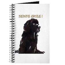 Newfs dRule! Journal