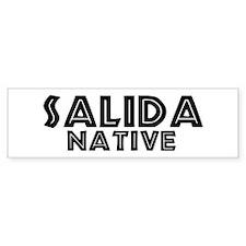 Salida Native Bumper Bumper Sticker