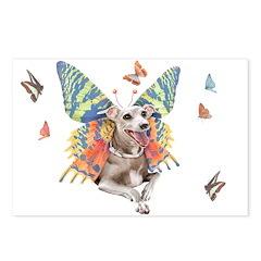 Italian Greyhound Butterfly Dog Postcards