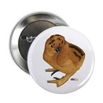 "Red Silkie Chick 2.25"" Button (100 pack)"
