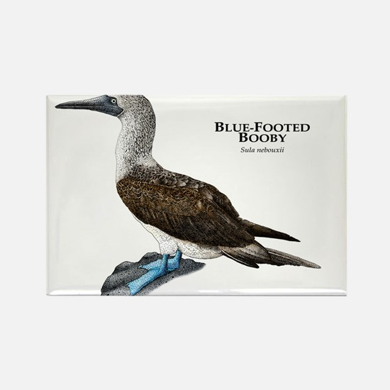 Blue-Footed Booby Rectangle Magnet