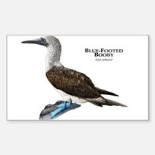 Blue-Footed Booby Sticker (Rectangle)
