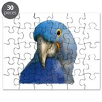 Hyacinth Macaw Puzzle