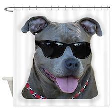 Pitbull in sunglasses Shower Curtain