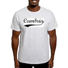 Cambria - Vintage Ash Grey T-Shirt