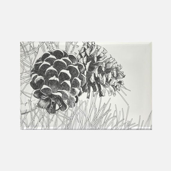 Pine Cone Rectangle Magnet