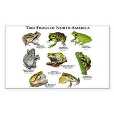 Tree Frogs of North America Decal