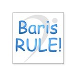 3-baris rule.png Square Sticker 3