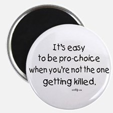 Anti-pro-choice Magnet