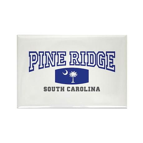 Pelion South Carolina, SC, Palmetto State Flag Rec
