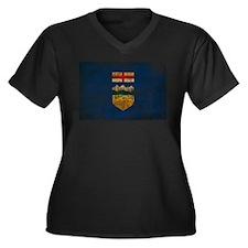 Alberta Flag Women's Plus Size V-Neck Dark T-Shirt