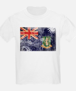 British Virgin Islands Flag T-Shirt