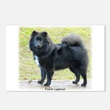Finnish Lapphund 9T039D-027 Postcards (Package of