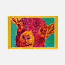 """Hey Kid"" Pygmy Goat Rectangle Magnet"
