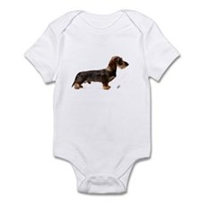 Miniature Wire Haired Dachshund 9Y817D-046 Infant