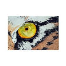 Tiger Eye Rectangle.jpg Rectangle Magnet