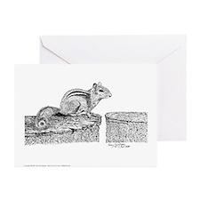 Chipmunk Pen & Ink Greeting Cards 6 Pck