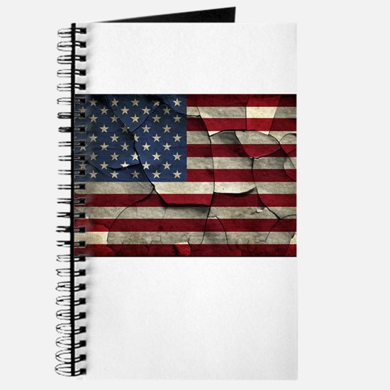 Divided States of America Journal