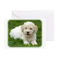 Lagotto Romagnollo 8T19D-12 Greeting Card