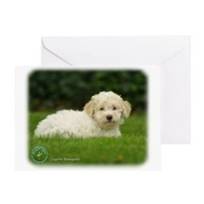 Lagotto Romagnollo 8T19D-24 Greeting Card