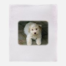 Lagotto Romagnollo 8T22D-09 Throw Blanket