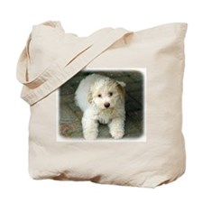 Lagotto Romagnollo 8T22D-09 Tote Bag