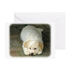 Lagotto Romagnollo 8T22D-12 Greeting Card