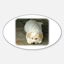 Lagotto Romagnollo 8T22D-12 Sticker (Oval)