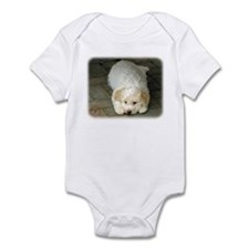 Lagotto Romagnollo 8T22D-12 Infant Bodysuit