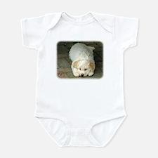 Lagotto Romagnollo 8T22D-12 Infant Bodysuit