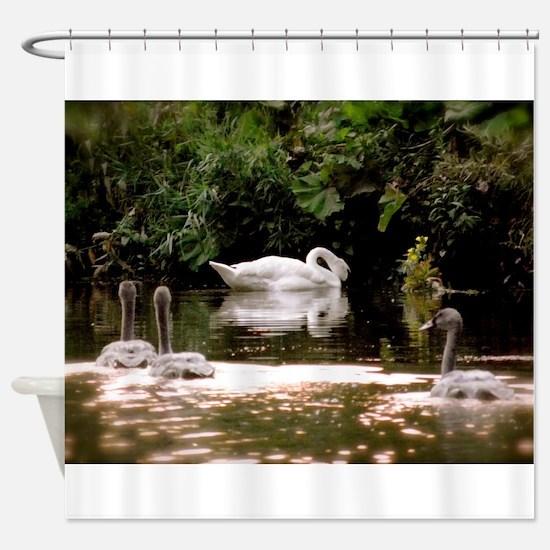 Swan Family Shower Curtain