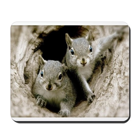 Baby Squirrels Mousepad