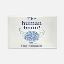 The human brain Rectangle Magnet (100 pack)