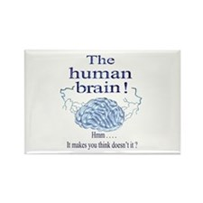 The human brain Rectangle Magnet