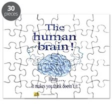 The human brain Puzzle