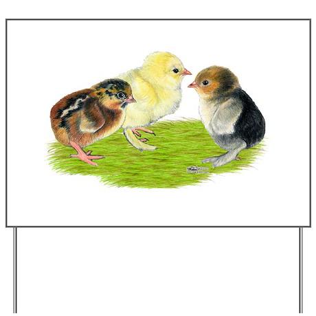 Baby Chicks Trio Yard Sign