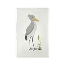 Shoebill Stork Rectangle Magnet