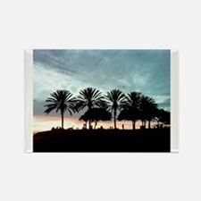 Palm Tree Sunset/Long Beach, CA Rectangle Magnet