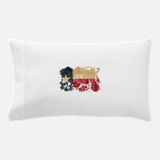 Texas Flag Pillow Case