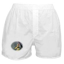 Pretty Bird Boxer Shorts