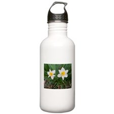 March Flag Water Bottle