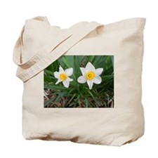 March Flag Tote Bag