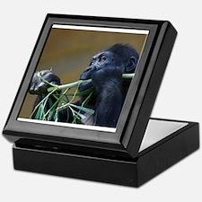 Hungry Gorilla Keepsake Box