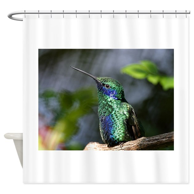 Hummingbird Kitchen Curtains: Hummingbird Shower Curtain By ChickPixs