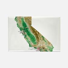 Cute California Rectangle Magnet (100 pack)